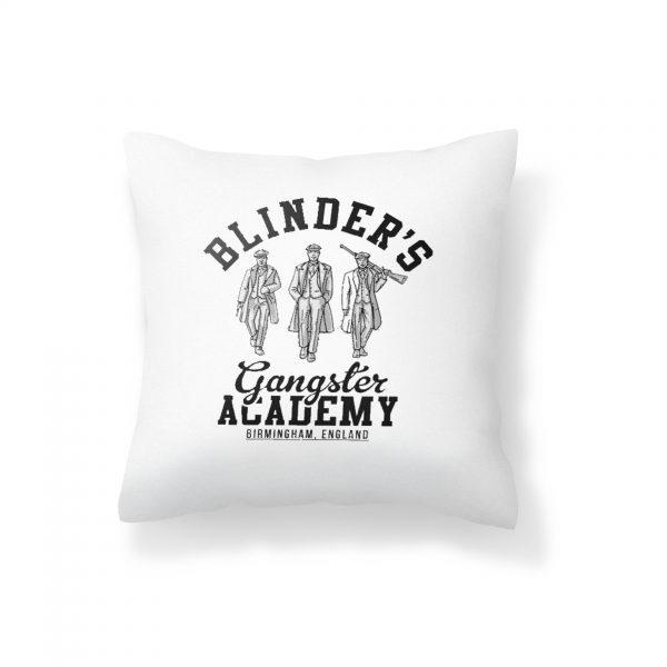blinder cushion