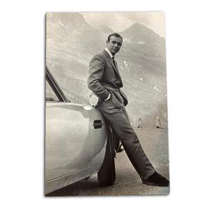 James Bond 20x16 Canvas Print